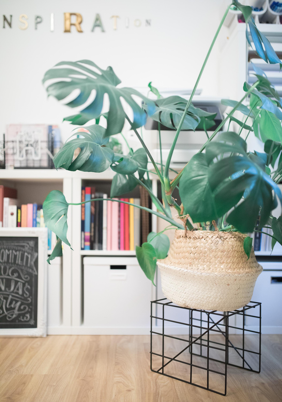 Mein Neues Home Office Ordnung Und Dekoration Teil 1 Frau